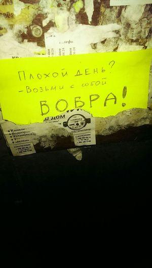 Popular Photos Dnipropetrovsk Ua