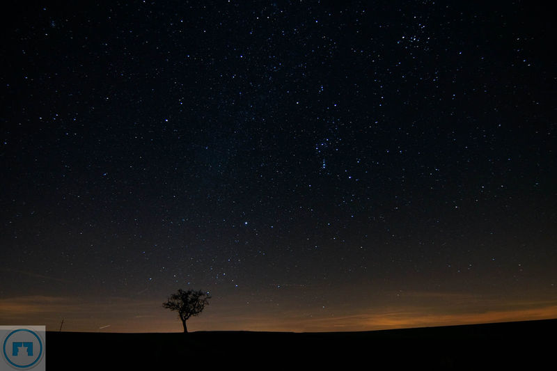 Astronomy Beauty In Nature Constellation Dark Galaxy Idyllic Infinity Landscape Low Angle View Majestic Nature Night No People Outdoors Remote Scenics Sky Space Space Exploration Star Star - Space Star Field Tranquil Scene Tranquility Tree