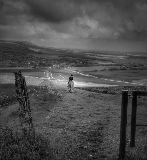 Landscape One Person Sky Beauty In Nature Horse Horse Riding Equestrian Equestrianphotography Horse Photography  Landscape_photography HuaweiP9 Huaweiphotography Englishcountryside Blackandwhite Blackandwhite Photography Blackandwhitephotography Black And White Collection  BW_photography Bnw_collection Black&white