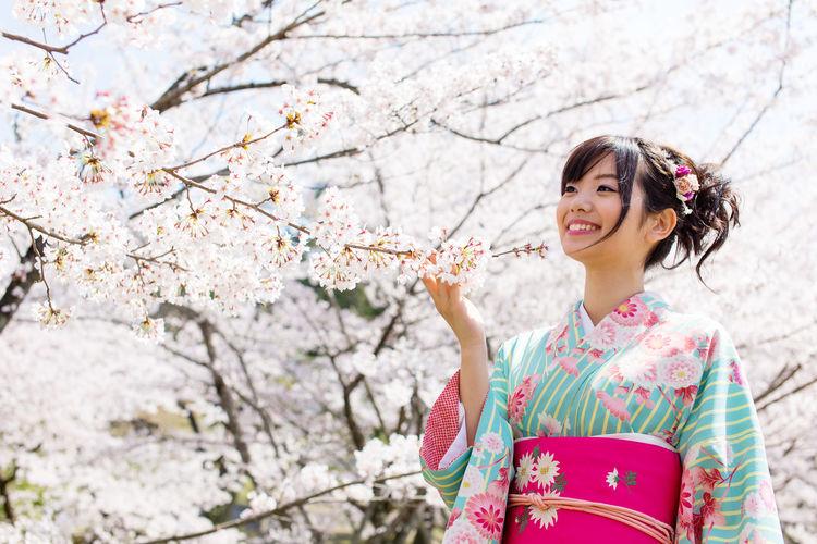 Cherry Blossom Focus On Foreground Japanese Women Kimono Portrait