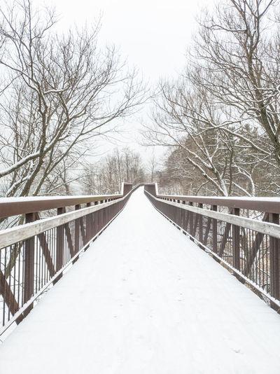 Footbridge over snow covered landscape