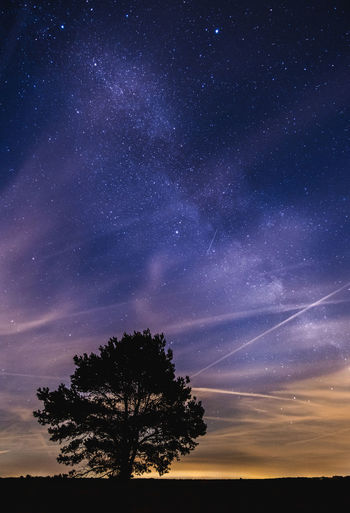 Milky way over The Netherlands during the perseids meteor shower. Netherlands The Netherlands Dutch Holland Star Stars Astronomy Perseids Meteor Meteor Shower Nightscape Night Tree Nature Landscape Milky Way Astro Photography Veluwe Galaxy Sky Star - Space Space Outdoors