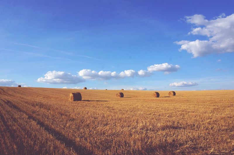 EyeEm Selects Field Bale  Rural Scene Agriculture Landscape Tranquility Sky Hay Tranquil Scene No People Nature Day Hay Bale Blue Beauty In Nature Outdoors Grass