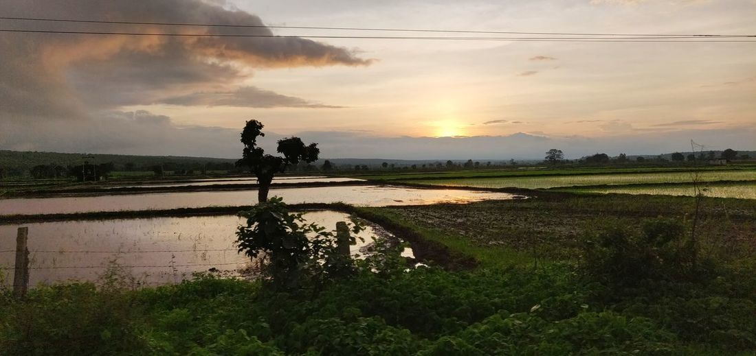 Beauty In Nature Beautiful Sunset♥♥Good Evening EyeEm Clouds Water Reflections Clear Sky Scenic View Water Sunset Rural Scene Agriculture Field