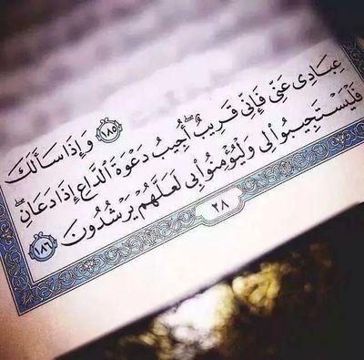 القرآن العراق بغداد ❤
