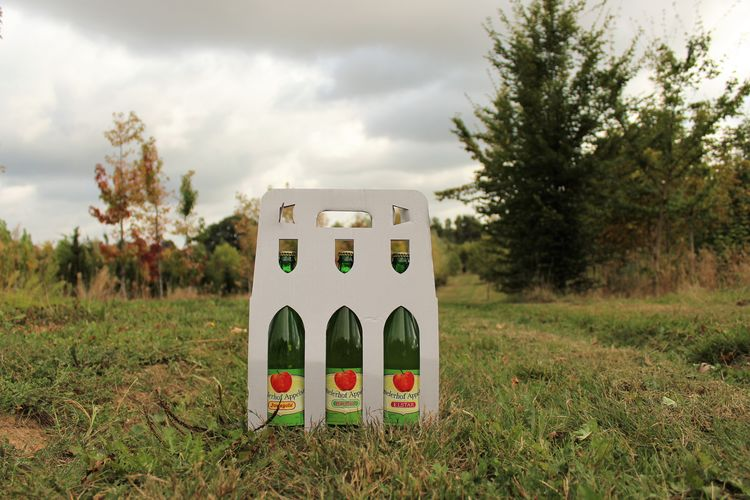 Healty Food See What I See Still Life Photography StillLifePhotography Apple Juice Applejuice Cloud - Sky Day Design Environment Field Focus On Foreground Grass Green Color Healthy Land Landscape Nature No People Outdoors Plant Shape Sky Still Life Tree