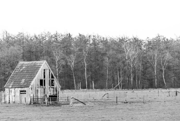 Black & White Black And White Blackandwhite Blackandwhite Photography Day Decay Eerie Eery Farm Field Forest House Landscape Lonely Lonely House Nature Outdoors Tranquil Scene Tranquility Tree Wooden Wooden House