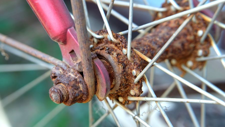Close-up of rusty metal fence on barbecue