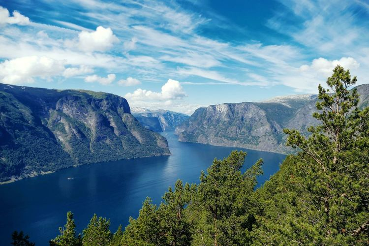 Fjord in Norway🗻 Mavic Drone  Mavicpro Mavic Pro Oslo Mjøsa Mountains Climb Hiking FZ2000 Norway Mountain Pine Tree Scenics Lake Nature Landscape Pinaceae Water Tree Outdoors No People Beauty In Nature Forest Blue Mountain Range Sky Day