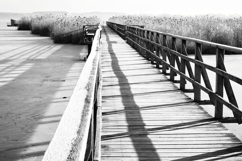 Light And Shadow Grass Landscape Black And White Scenics Black & White Beauty In Nature Footpath Walkway No People Cold Temperature Wood - Material Winter Federsee Tranquil Scene Outdoors Dried Nature Rural Scene Tranquility Water Sea Footbridge Sunlight Bridge - Man Made Structure Railing Pier Sky Cold Pathway