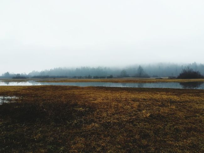 Foggy Lake Fog Foggy Morning Lakeview Enchanted Forest EyeEmNewHere Sky Tranquility No People Nature Outdoors Water Landscape First Eyeem Photo Shades Of Winter