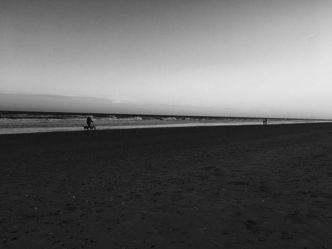 B E A C H Beach Scenics Shore Tranquility Day Sand