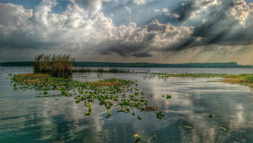 Lake Monroe Florida Sunset #sun #clouds #skylovers #sky #nature #beautifulinnature #naturalbeauty #photography #landscape Htconem8 Hdr_Collection My Smartphone Life