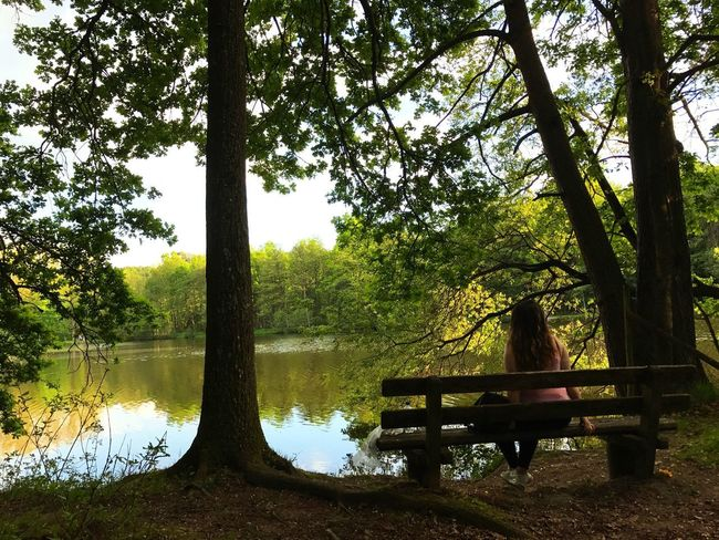 One Person Tree Lake Tranquility Nature Sitting Outdoors Beauty In Nature Water Sky Rear View Tree Trunk Lake View Forest Stuttgart Germany EyeEmNewHere Let's Go. Together. Sommergefühle EyeEm Selects Your Ticket To Europe