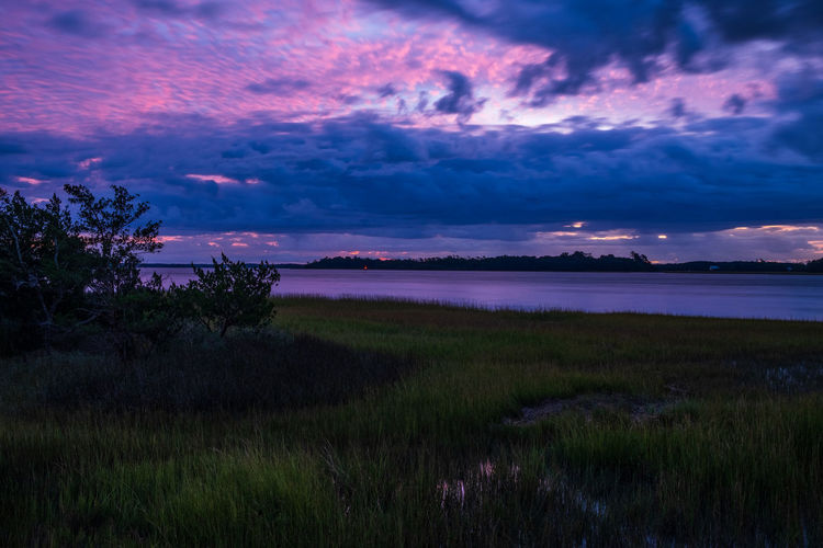 Sunrise, Daniel Island, Charleston, SC, 2018 Cloud - Sky Sky Beauty In Nature Scenics - Nature Tranquil Scene Tranquility Field Nature Grass Environment No People Purple Landscape Water Outdoors Sunrise Charleston Daniel Island, Sc