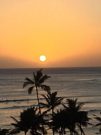 Sunset Sun Horizon Over Water Orange Color Sky Palm Tree Silhouette No People Yellow Color Ocean No Edit/no Filter Oahu Hawaii Oahu, Hawaii Island Of Oahu, Hawaii Oahu Oahu Sunset Oahu / Hawaii An Eye For Travel The Great Outdoors - 2018 EyeEm Awards