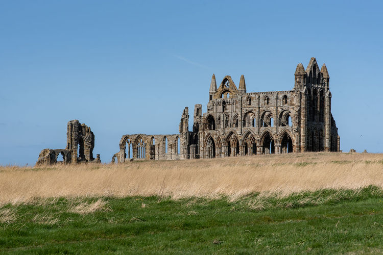 whitby abbey. Whitby Abbey Ancient Civilization King - Royal Person Leopard History Sky Architecture Old Ruin Ruined Bad Condition Damaged Broken Run-down Weathered