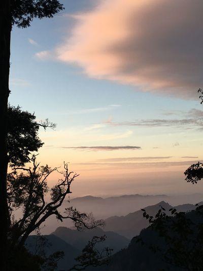 徜徉雲霧間 Taiwan Sky Sunset Tree Cloud - Sky Tranquility Beauty In Nature Scenics - Nature Tranquil Scene Plant Silhouette Nature Mountain Non-urban Scene Idyllic No People Mountain Range Outdoors Orange Color