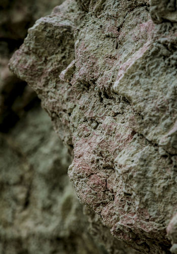 Beauty In Nature Close-up Colors Coloured Detail Focus In Foreground Focus On Foreground Green And Pink Rock Texture