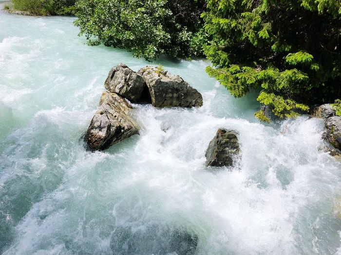 White Water Wildlife & Nature Water Nature Beauty In Nature Tree Motion Day No People Rock Waterfront Rock - Object Splashing Flowing Water Tranquility