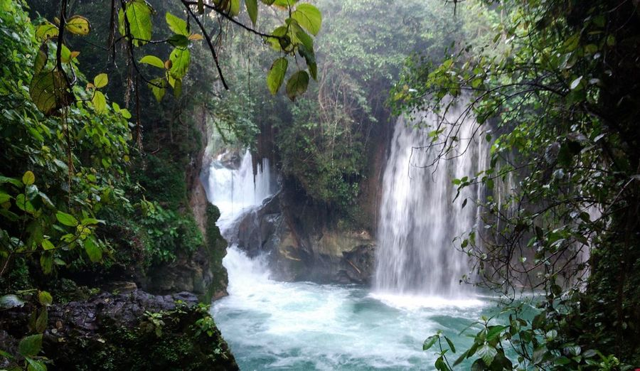 Puente de Dios Puente De Dios Tree Scenics - Nature Water Beauty In Nature Waterfall Forest Motion Plant Nature Flowing Water