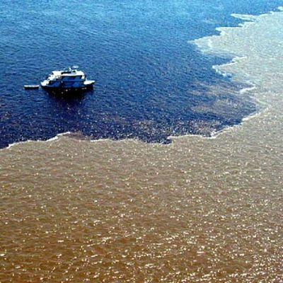 Encontro das Águas Brasilemfotos Imagemquefala Tudosobretudo Topstagram