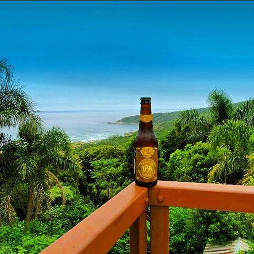 🍺 Amazon Beer IPA Cumaru 🍺 A IPA Cumaru é maturada com sementes de Cumaru, também conhecida como baunilha da Amazônia e que possui propriedades medicinais. Entre os índios, essa semente é conhecida como tônico cardíaco. Não me agradou, difícil de terminar a garrafa. País: Brasil Graduação alcoólica: 5,7% Amazonbeer IPA 9ninebeers Cheers Cerveja Beer Beers Beergarden  Beeradvocate Beerlove Craftbeer Pivo Beerpics Beerlife Beergasm Beersnob Cerveza Craftbrew Birra Instabeer Instacerveja Beerstagram Craftbeerlife Cervejaartesanal Beergeek beertimebeertographybeerpornbeernerdbeeroftheday