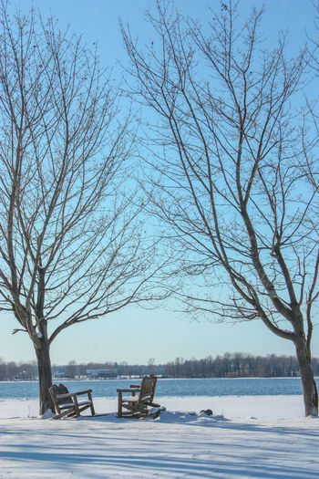 Bare Tree Beauty In Nature Branch Clear Sky Cold Cold Temperature Day Frozen Lake Landscape Nature No People Outdoors Scenics Sky Snow Tranquil Scene Tranquility Tree Tree Trunk Water Weather Winter