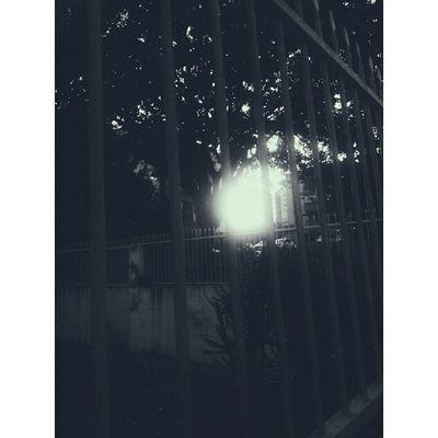 ▪ Vscocam ▪ Vscobrasil ▪ VSCO ▪ Vscofocus ▪ sunset ▪ Bw ▪ instadaily ▪ photoftheday