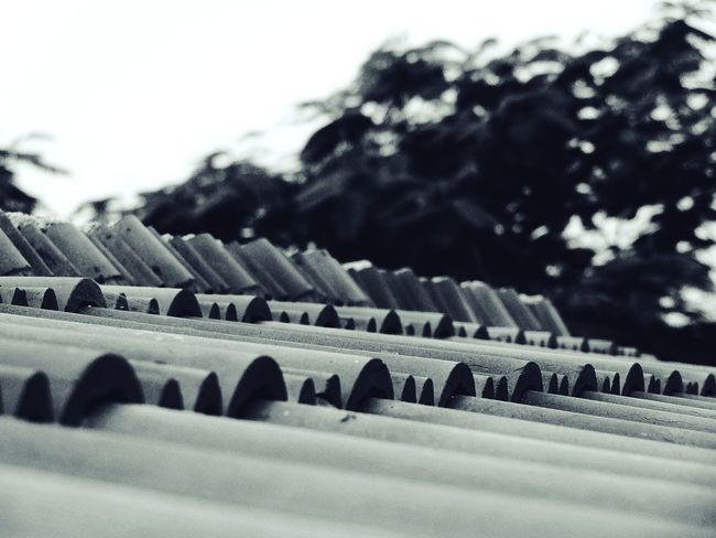 Roof tiles Fine Art Photography Randomshot