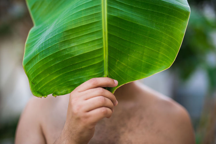 Close-up of hand holding banana leaf over face