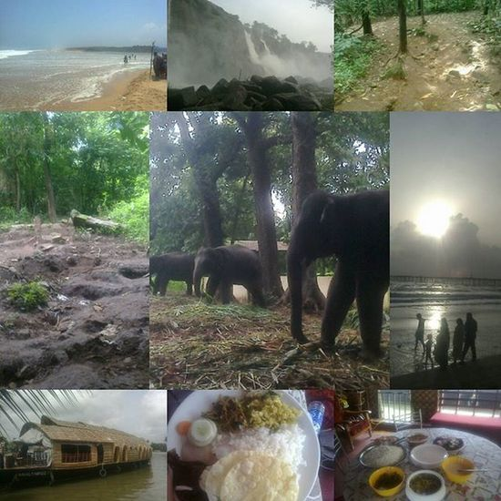 Throwback from LastYear 😍Kerala 🌏GodsOwnCountry Boathouse 🌅Beach Falls Forest 🐘 Elephant Unforgetable