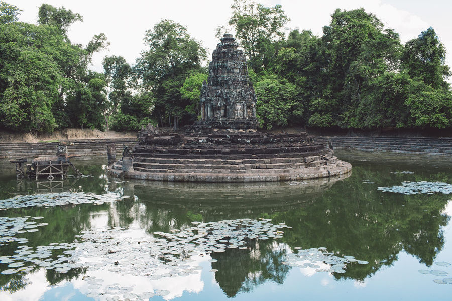 Siem Reap Cambodia Angkor Tree Religion Belief Spirituality Plant Place Of Worship Reflection Architecture Waterfront Water History Built Structure Lake Nature The Past Travel Destinations Day No People Outdoors Ancient Civilization