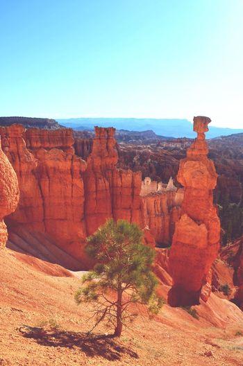 Brice Canyon Traveling Rock Rocks And Minerals Beautiful Beautiful Nature USA USAtrip Pastel Power Zen