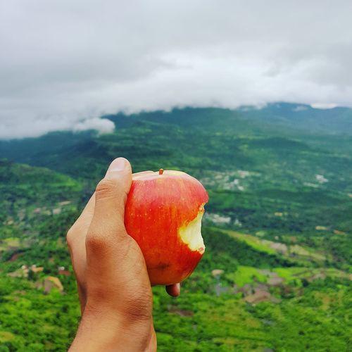 Cropped hand holding apple against landscape