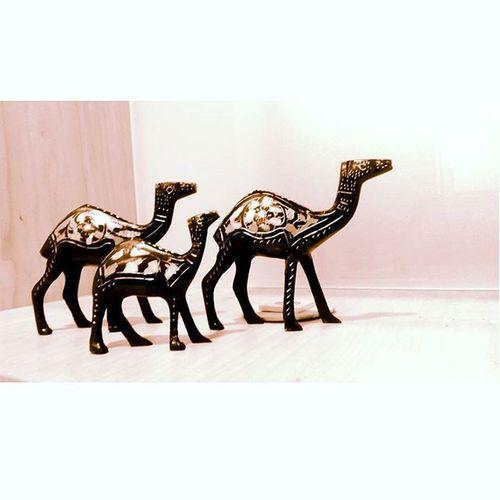 Live forever !!! Sculpture Camels Sleepless_nyt Clickie Insta Art