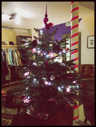 Christmas tree Traveling Living Room Hostel