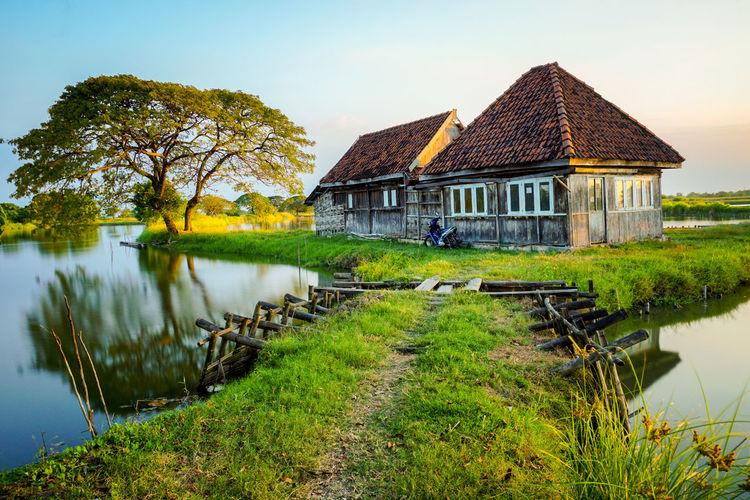 Fenomenal house