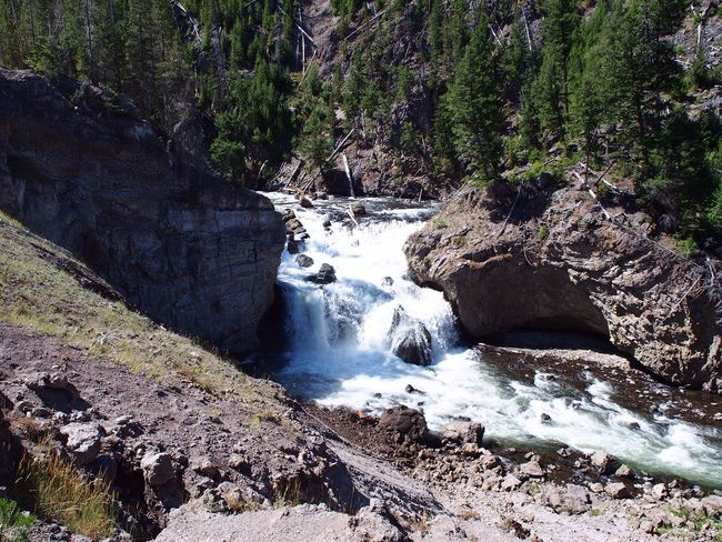 Yellowstone National Park Waterfall Nature Beauty In Nature River Water Motion Rock - Object Tranquil Scene Scenics No People Outdoors Tree Day Tranquility Forest Sky