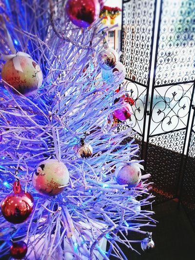 Showcase:December Hello World Relaxing Enjoy Life Loveit Color White Blue Christmas Christmas Tree WhiteCollection Best Christmas Lights
