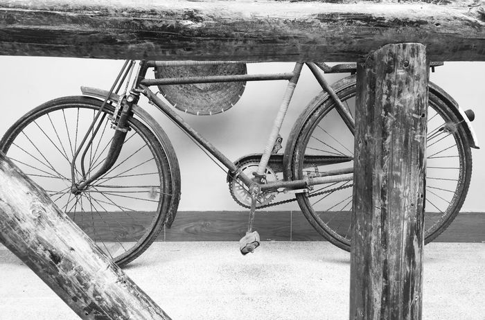 Bicycle at Dapeng Ancient Village - Shenzhen, China Bicycle Bicycles Cycle China Wall - Building Feature Shenzhen Old Bicycle Bicycle Wheels Old Style Retro Old Bike Bicycle Wheel Wheels Bicycling Wheel Rusty Dapeng Ancient Village Ancient Village Dapeng Chinese Village