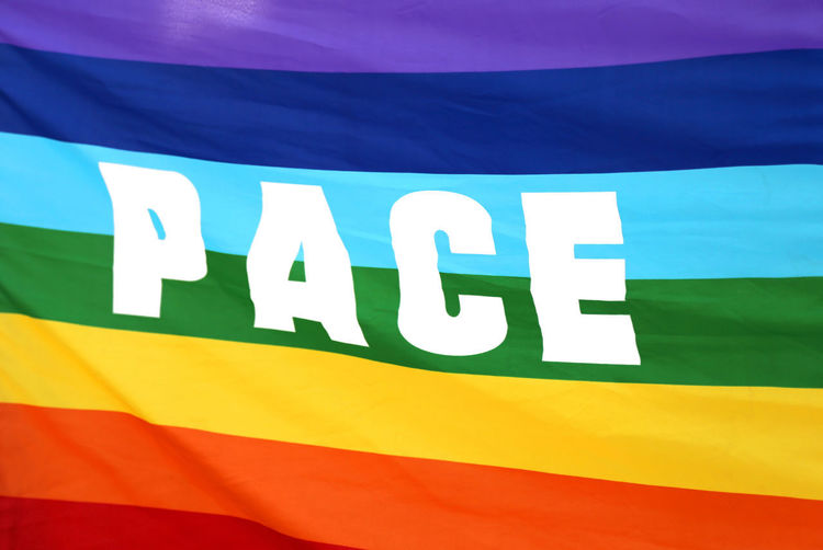 Italian rainbow Peace flag with big written PACE Peace Peaceful Pace Italian Italy Italy Italian Concept Conceptual Multicolors  Rainbow Rainbow Colors Demostration Text Word Language Milan Milano Rome Roma Pacifist Pacifism Pacifista Pacifismo Hope Lgbt Lgbt Pride Pride Parade Flag