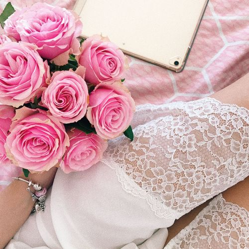 Flower Flowering Plant Pink Color High Angle View Plant Beauty In Nature Rose - Flower Rosé Nature Freshness Textile Pattern Close-up Indoors  Vulnerability  Floral Pattern Fragility Lifestyles No People Flower Arrangement