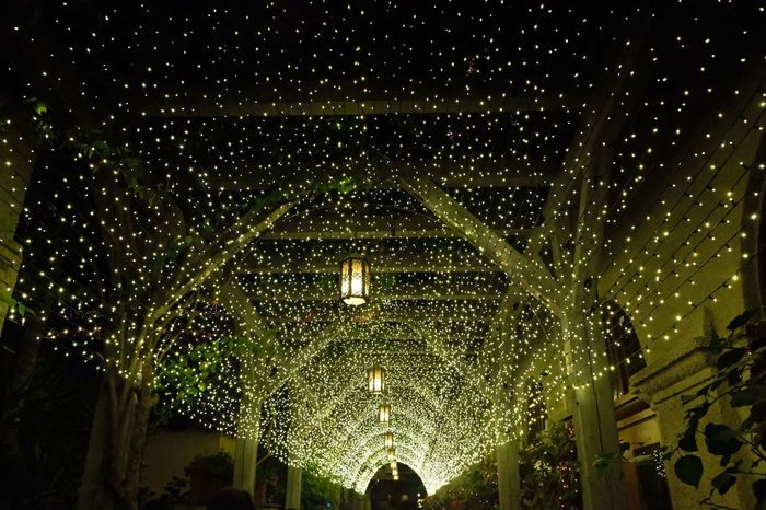 Light way path at Festival Of Lights, Mission Inn, Riverside Holidays Holiday Festive Festival Lights Light Mission Inn Festival Of Lights Lighting Equipment Night Indoors  Architecture Low Angle View EyeEm Ready   Built Structure No People Hanging