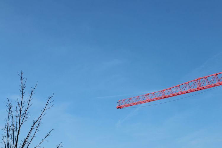 Red Crane Crane Blue Sky Tree Clear Sky Vapor Trail Red Blue