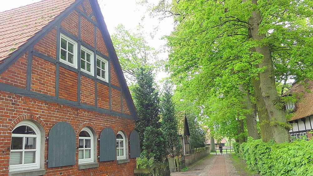 Exterior Historic Idyllic Scenery Idyllic Village Low Angle View Narrow Northern Germany, Near Fischerhude Old Farmhouse Outdoors Park - Man Made Space Path Perspective Plant Quiet Path Tree