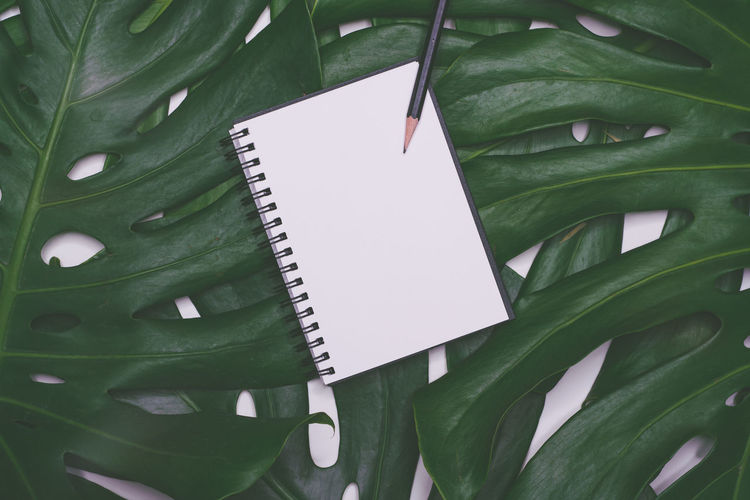 Directly above shot of pen and book on leaves