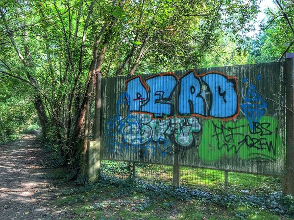 Graffiti in the nature Graffiti Outdoors Multi Colored No People Art Nature Nature_collection Non-urban Scene Contrast Controversial