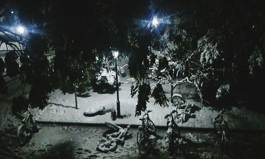 晚上爬起来给没看过雪景的波,拍张照片 Enjoying Life First Eyeem Photo