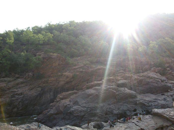 Peeking over the rocks